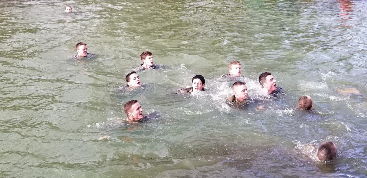 comando_gaggle_in_duck_pond_.jpeg
