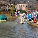 Pike Plunges